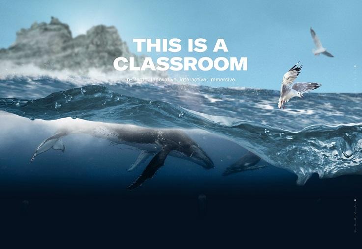 深海养殖行业该如何进行网站建设